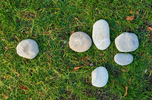 green grass with white stones